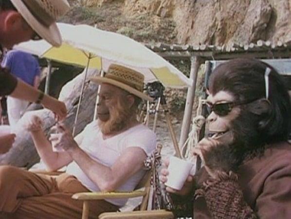 Numa época em que os efeitos especiais eram usados com menos frequência, era assim que os atores de O Planeta dos Macacos descansavam entre uma cena e outra. Em 1968