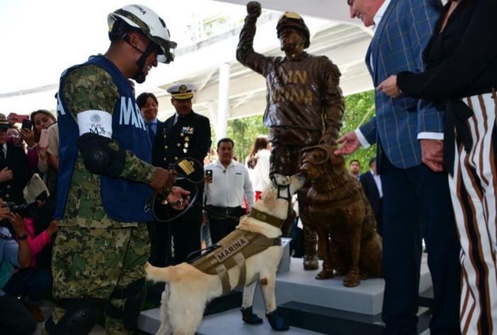 Cão de resgate recebe uma estátua depois de salvar a vida de 12 pessoas durante o terremoto do México no ano passado