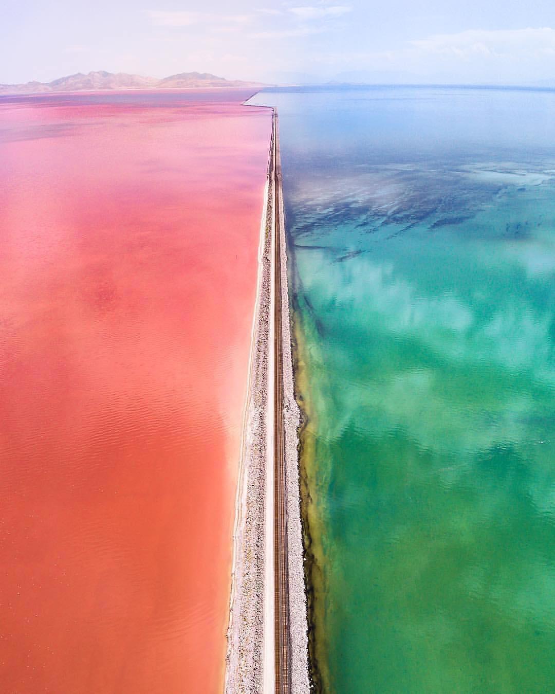 Grande lago salgado de Utah cortado por uma ferrovia. À esquerda, o lago ficou rosa devido aos camarões e algas