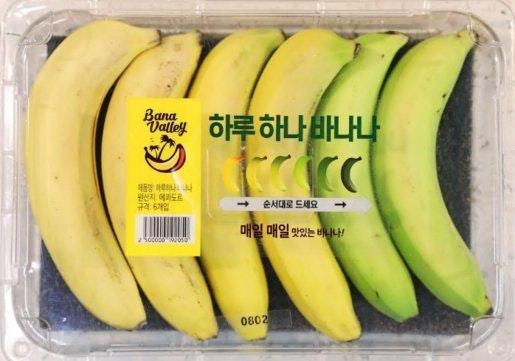 Embalagem contendo várias bananas de maturação diferente, para que você possa comê-las durante vários dias