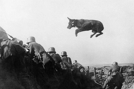 ão alemão levando mensagem para a linha de frente durante uma ofensiva do exército alemão em janeiro de 1918