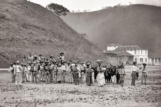 Escravos de uma plantação de café no Brasil, 1885