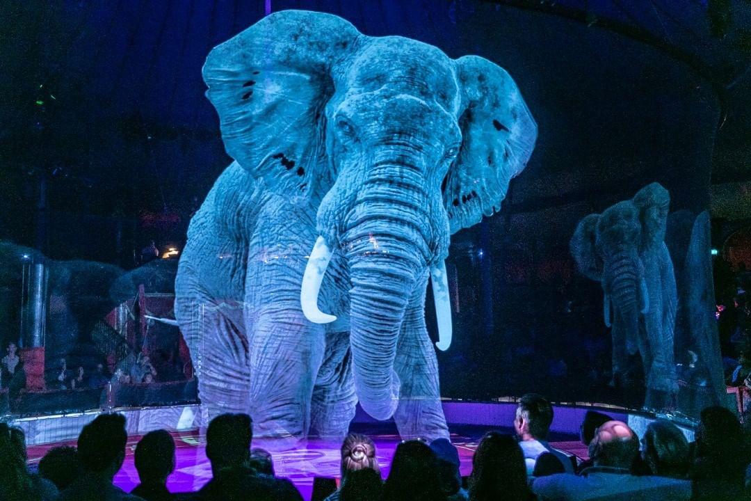 Circo na Alemanha se recusa a usar animais reais. Em vez disso, usa hologramas