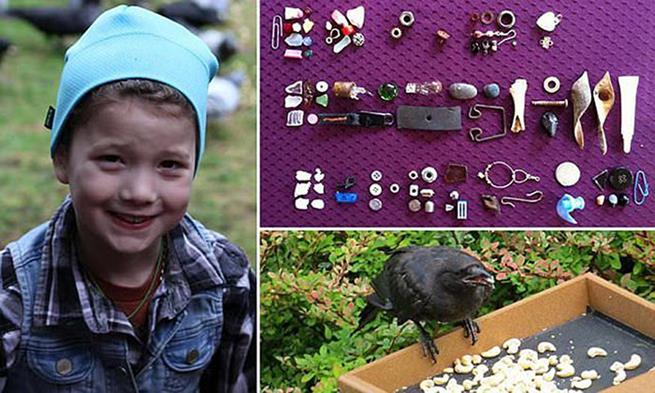 """/></noscript>Gabi Mann, essa garotinha de 8 anos que vive em Seattle, recebe presentes de corvos em seu jardim. Ela alimenta os animais com frequência e recebe em troca pequenos """"presentes"""" dados por eles"""" class=""""wp-image-158775″/><figcaption><b>Gabi Mann, essa garotinha de 8 anos que vive em Seattle, recebe presentes de corvos em seu jardim. Ela alimenta os animais com frequência e recebe em troca pequenos """"presentes"""" dados por eles</b></figcaption></figure> <figure class="""