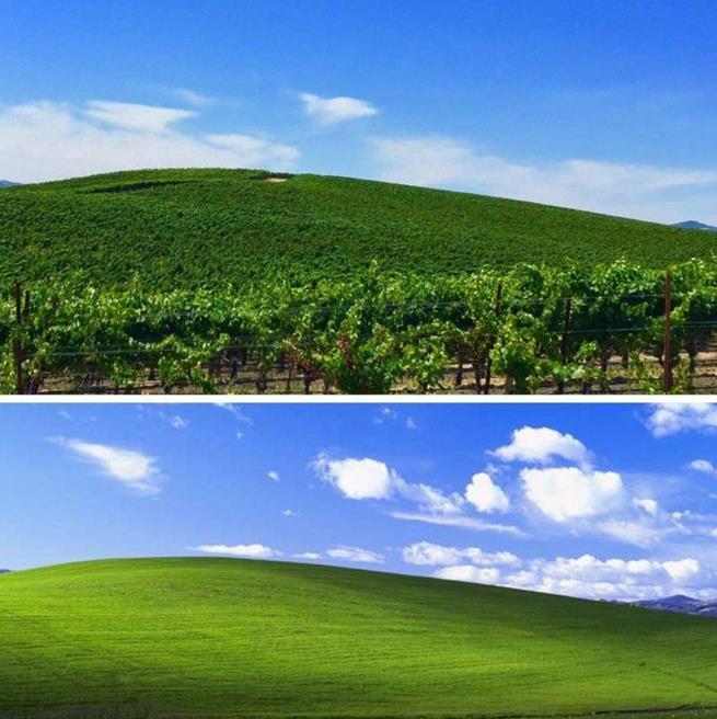 Papel de parede do Windows XP hoje