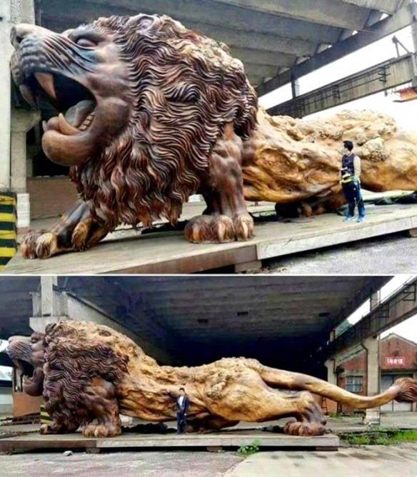 Enorme escultura de leão esculpida em uma sequóia