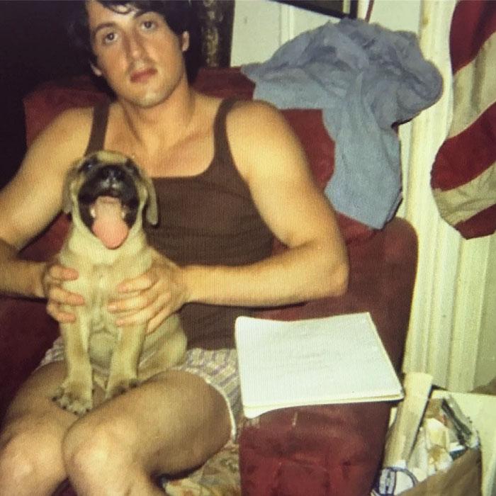 Sylvester Stallone teve que vender seu cachorro, Butkus, para conseguir comprar comida. Ele vendeu por US$ 40, mas comprou de volta por US$ 15 mil
