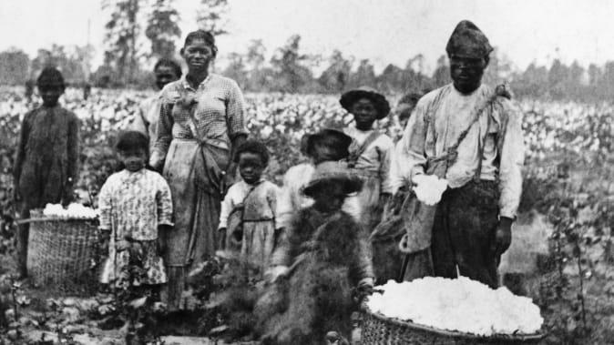 Família escravizada colhendo algodão nos campos perto de Savannah, por volta de 1860