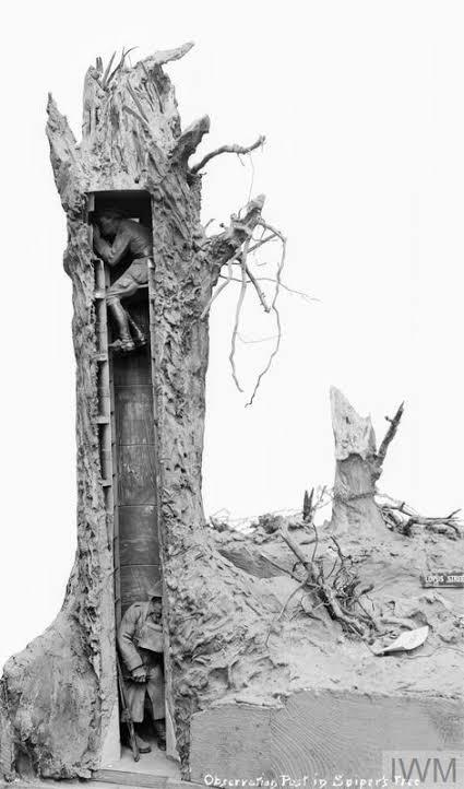 Árvores falsas foram usadas durante a Primeira Guerra Mundial como postos de observação