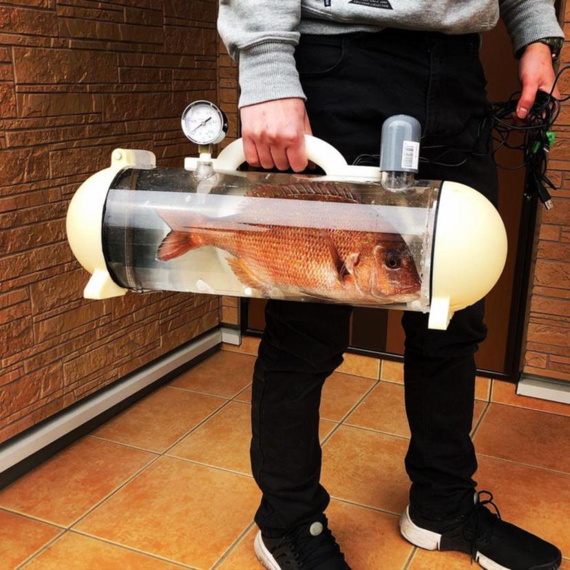Uma empresa japonesa desenvolveu esta cápsula para transporte de peixes vivos. Chamada de