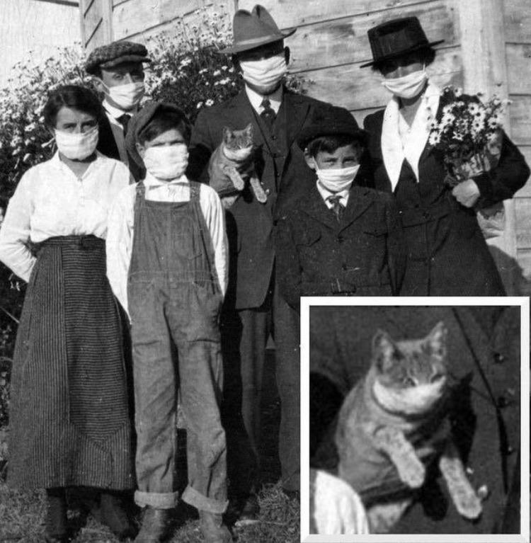 Durante a gripe espanhola, em 1918, nem o gato da família escapou de usar máscara.