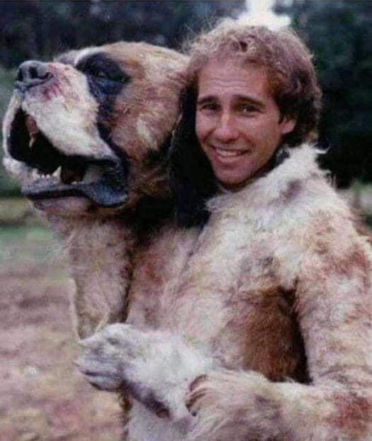 Cujo, filme de 1983, foi interpretado por quatro cães são bernardo, vários cães mecânicos e pelo dublê Gary Morgan, que vestia uma fantasia de cachorro.