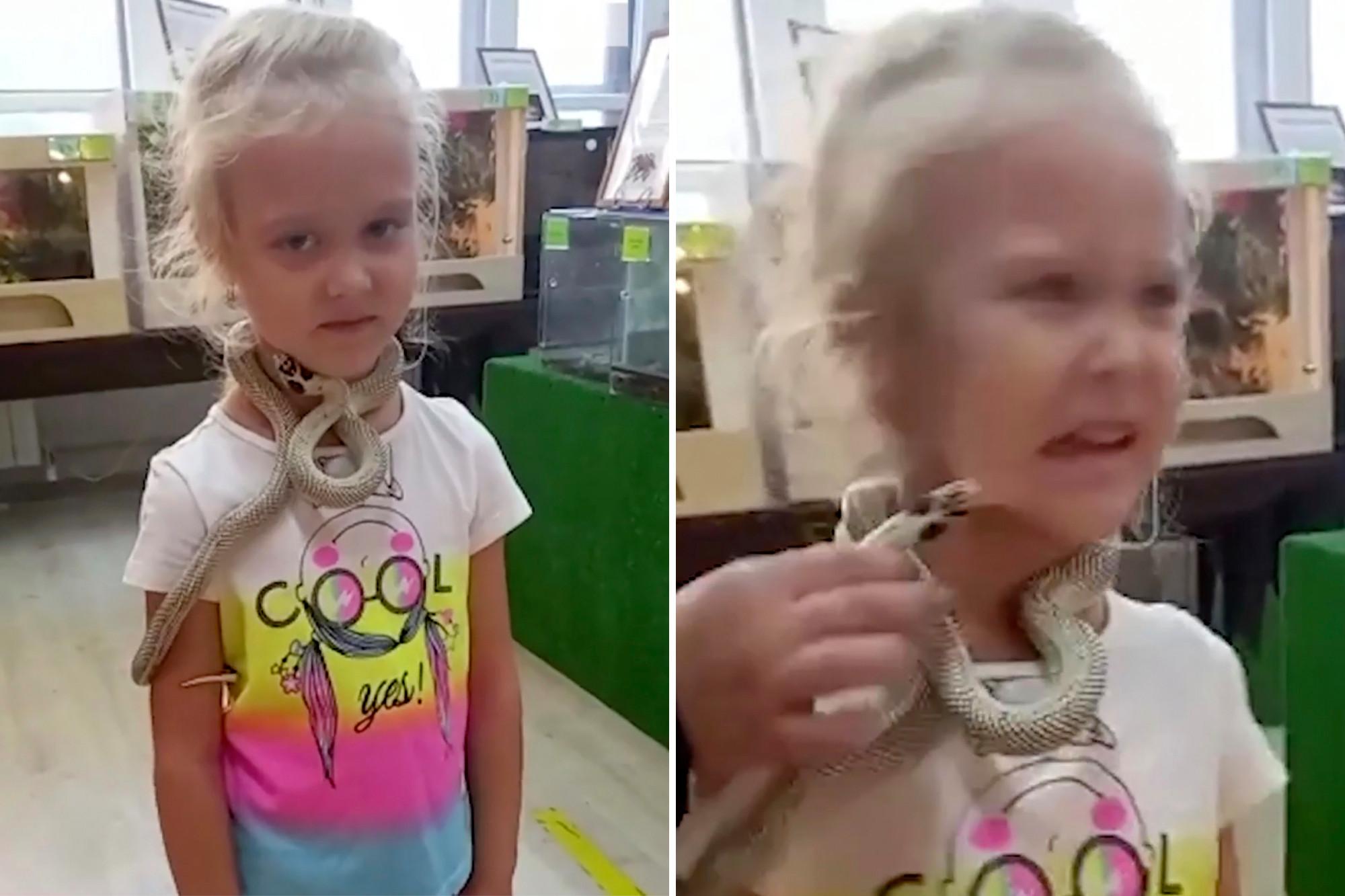 Cobra morde criança