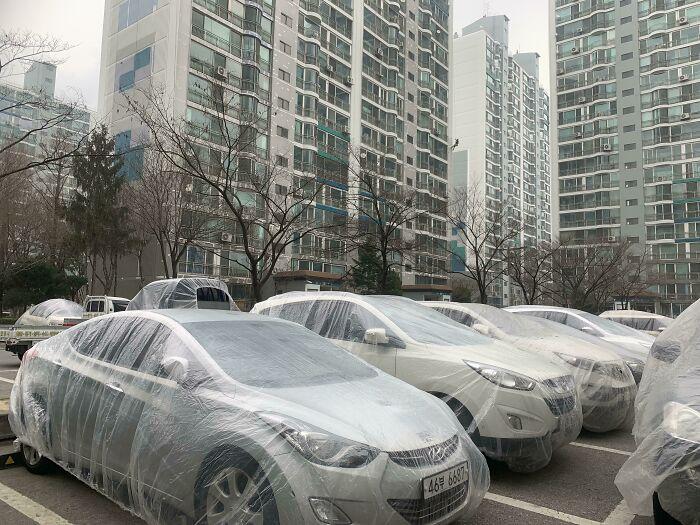 Antes de iniciar a pintura de um prédio, os pintores cobriram todos os carros estacionados com plásticos.