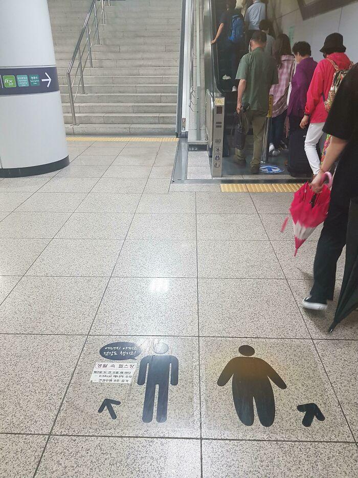 Maneira encontrada para incentivar pessoas a usarem escadas tradicionais.