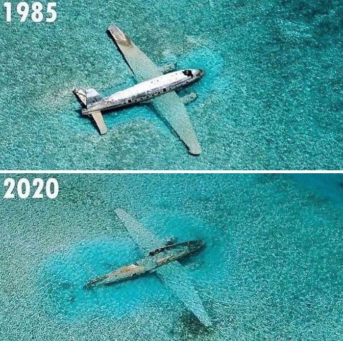 Curtiss C-46 Commando, um dos aviões de contrabando de drogas de Pablo Escobar submerso nas Bahamas
